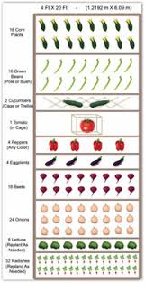 Small Picture Interesting Vegetable Garden Layout Planner Nice Decoration