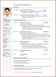 Sample Job Application Resume 100 Sample Of Resume For Applying Job SampleResumeFormats100 14