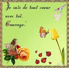 Dernier hommage à Camomille... Images?q=tbn:ANd9GcS-4RY9er88lv_aOGNrnRWUQAt72HB9cAu6mQNhBaBcO5hIrI3auA