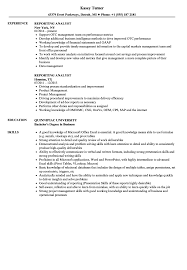 Investor reporting analyst resume