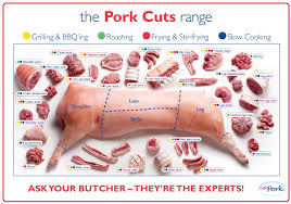 Pork Chart Cuts Of Meat Pin On My Style