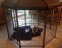 pet gazebo large deluxe advantek pet gazebo outdoor kennel outdoor designs