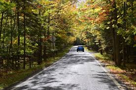 photo essay michigan s tunnel of trees cheers to traveling this trip is perfect to truly experience the beauty of the enchanting northern michigan here s my favorite photos from my autumn drive through the tunnel