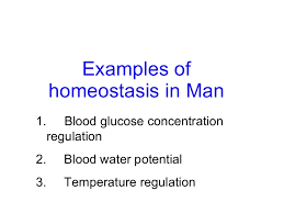 chapter homeostasis lesson examples of homeostasis in man