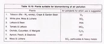 essay on air pollution top essays on air pollution in plants suitable for biomonitoring of air pollution