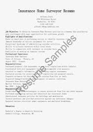 Psw Resume Example Sample Resume Psw Position Virtren Cv Examples