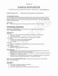 Ats Optimized Resume Template Bkperennials