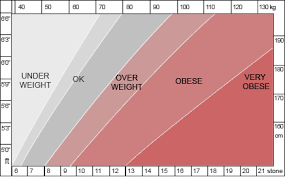 Ideal Weight Chart In Stones A Healthy Weight Is
