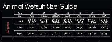 animal sizes chart animal ladies wetsuit sizes