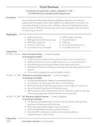 Technical Consultant Resume Emelcotest Com