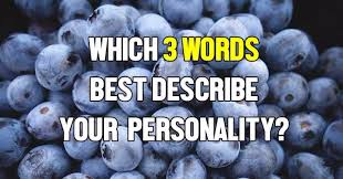3 words that describe you which 3 words best describe your personality quizlady
