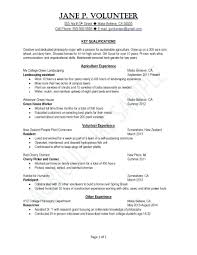 Resume Template Student College Resume Resume Samples For College Students
