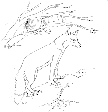 Small Picture fox in socks coloring pages 28 images fox in socks coloring