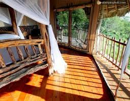 Luxury Treehouse Accommodation  Design Of Your House U2013 Its Good Treehouse Accommodation