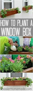 Diy Window Boxes Best 20 Window Boxes Ideas On Pinterest Outdoor Flower Boxes