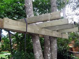 how to build a treehouse. Picture Of Build The Platform How To A Treehouse T