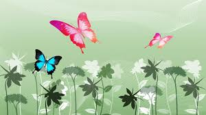 colorful butterfly wallpapers. Interesting Colorful Butterfly Wallpaper  Colorful Butterfly Wallpapers 27 Background Wallpaperu2026 Throughout