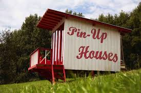 6 diy tiny homes you can build for under 15 000 funny pictures es memes funny images funny jokes funny photos
