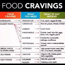 How To Avoid Bad Food Cravings By Melissa Liu Musely