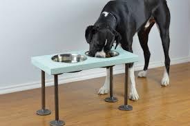 diy raised dog feeder