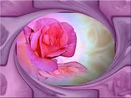 Rose Swirls HD desktop wallpaper ...