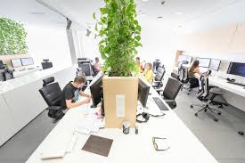 Organic Office Organic Office Spaces House Design And Decor