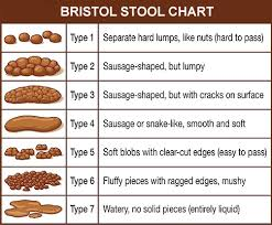 Stool Movement Chart How Often Should You Poop Are You Supposed To Poop Every Day
