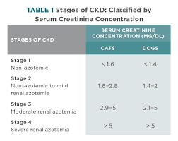 Serum Creatinine Chart Treatment Guidelines For Chronic Kidney Disease In Dogs Cats