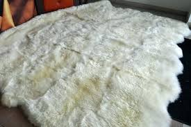 how to clean wool rug a at home wash cleaning rugs dog urine with vinegar