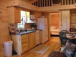 cabin kitchen design. Small Cabin Interior Design | Kitchen