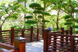 a day at morikami museum and japanese gardens blog april 10 2018