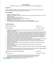 Professional Summary Resume Examples For Software Developer Resume