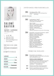 Resume Accent Fine Proper Use Of Resume Image Documentation Template Example 16