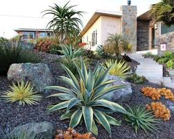 Small Picture Desert Garden Design Images About Desert Landscapes On
