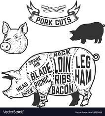 Pork Cuts Butcher Diagram Design Element For
