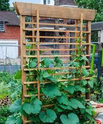 Small Picture 12 best Vertical vegetable garden images on Pinterest Gardening