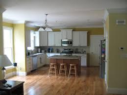 Kitchen Color Schemes With Oak Cabinets  Kitchen Design Ideas Interior Design Ideas For Kitchen Color Schemes
