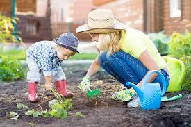 Fall Gardening Tips  Shorewest Latest News U2013 Our BlogFall Gardening