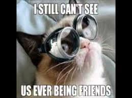 Best of the Grumpy Cat Meme! (Clean) - YouTube via Relatably.com