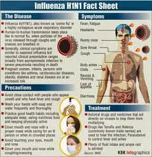 college essays college application essays swine flu essay essay on the swine flu in world s largest