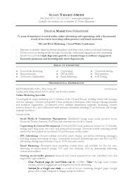 Sales And Marketing Resume Samples Resume Sales And Marketing Marketing Curriculum Vitae Examples 89