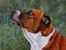 nature wildlife and pet portrait paintings