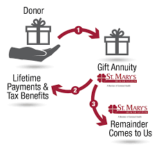 the typical charitable gift annuity donor