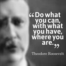Quotes By Teddy Roosevelt Stunning Teddy Roosevelt Quotes And Sayings
