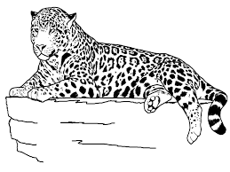 Zoo Animal Coloring Pages Also Available Are Farm Animals All