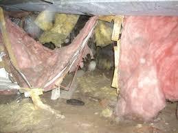 installing insulation in crawl space. Modren Insulation Crawlspace With Falling Batt Insulation1 And Installing Insulation In Crawl Space H