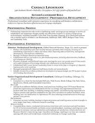 Technology Consultant Resume Resume Work Template