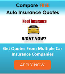 car insurance without drivers license