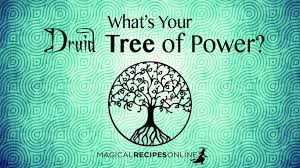Celtic Tree Chart Celtic Astrology Druid Zodiac Signs Magical Recipes Online
