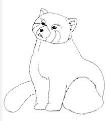 Small Picture Coloring Pages Red Panda Bears Colouring Pages Red Panda Coloring
